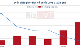 [Cổ phiếu nổi bật tuần] DPM – về giá thấp nhất trong một năm qua