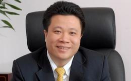 """Vì sao Hà Văn Thắm lại """"đánh bài chuồn"""" khỏi thương vụ mua Ngân hàng Đại Tín?"""