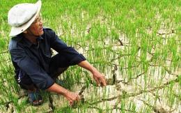 Là nền kinh tế triển vọng nhất Đông Nam Á, WB vẫn hạ dự báo tăng trưởng của Việt Nam vào phút chót