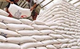 Gạo Việt cần chú trọng chất lượng hơn là chạy theo sản lượng