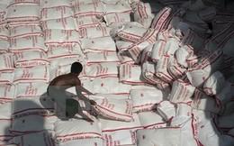 Thái Lan chủ trương bán 10 triệu tấn gạo tồn kho trong năm nay