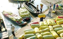 Thái Lan xả kho 11 triệu tấn gạo: Gạo cũ xấu, giá rẻ