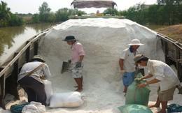 Diêm dân Bạc Liêu vẫn phải bán muối thấp hơn giá quy định