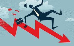 Inox Kim Vĩ lên tiếng việc cổ phiếu KVC giảm sàn 13 phiên liên tiếp