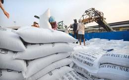 1 năm buồn cho hạt gạo Việt