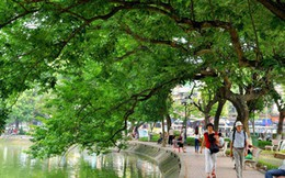 Chủ tịch Hà Nội: Sẽ triển khai thí điểm tuyến phố đi bộ quanh Hồ Gươm