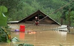 """Chủ tịch Quảng Bình: """"Cách chức ngay cán bộ thu tiền cứu trợ của dân"""""""