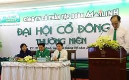 """ĐHĐCĐ Mai Linh Group: """"Thay máu"""" dàn lãnh đạo, hứa trả cổ tức chậm nhất vào 2018"""