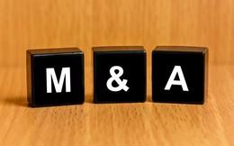 Sôi động các thương vụ M&A trong lĩnh vực bán lẻ