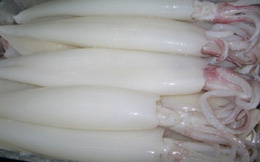 Xuất khẩu mực, bạch tuộc sang các thị trường lớn đều giảm