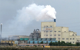 Hải Phòng: Di dời nhà máy giấy Hapaco, đề xuất đóng cửa nhà máy DAP