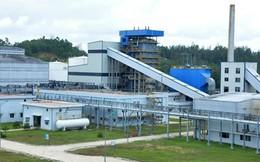 Chuyển hồ sơ sang Bộ Công an điều tra sai phạm hai nhà máy Ethanol