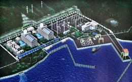 Thông cáo báo chí về việc dừng thực hiện Dự án điện hạt nhân Ninh Thuận