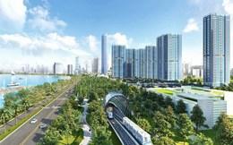 Tập đoàn đầu tư Việt Nam hoàn tất nhận chuyển nhượng 572 triệu cổ phiếu VIC