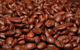 Các nhà phân tích đang quá bi quan về triển vọng giá cà phê?
