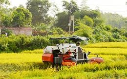 Tăng trưởng nông nghiệp âm, tái cơ cấu và câu trả lời của Bộ trưởng