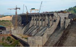 Sông Đà 505 lên phương án chia cổ tức bằng tiền tỷ lệ 20%