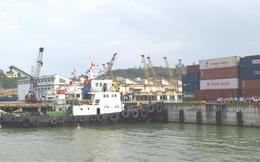 Cảng Đà Nẵng chuẩn bị gia nhập sân chơi UPCoM