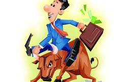 May Phan Thiết lại được áp dụng quy chế riêng khi trả cổ tức lớn hơn thị giá