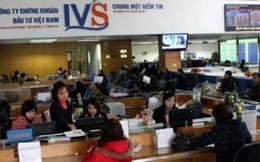 Thị giá trên 15.000 đồng, IVS sắp chào bán 18,9 triệu cổ phiếu giá 10.000 đồng