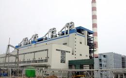 SCIC đăng ký bán toàn bộ 45 triệu cổ phần Nhiệt điện Hải Phòng