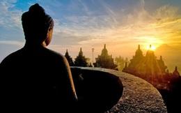 Bài học đầu tiên về lòng nhân ái của Đức Phật: Khi biết thứ tha, trái tim sẽ bình yên trở lại
