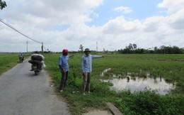 Tự ý phân lô bán nền đất nông nghiệp tại Hải Phòng: Gần 20ha đất ruộng bỏ hoang