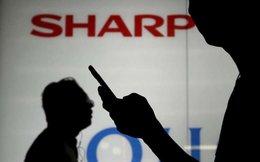 Sharp sắp về tay Foxconn với giá 5,9 tỷ USD?