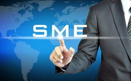 TPP cam kết gì về SME?