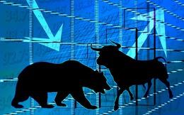 Cổ phiếu đầu cơ tiếp tục nổi sóng, Vn-Index giảm hơn 3 điểm do bluechips