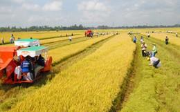 Tháo hạn điền – Cú huých để nông nghiệp làm ăn lớn