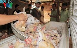 Thu giữ hơn 600 kg xương và thịt bê, dê, thỏ không rõ nguồn gốc