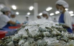 Mỹ vẫn áp thuế chống bán phá giá con tôm