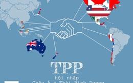 Gia nhập TPP, làm sai nhà nước sẽ bị doanh nghiệp kiện