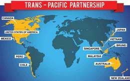 Đại sứ Việt Nam tại New Zealand: TPP mở ra trang mới cho phát triển kinh tế toàn cầu