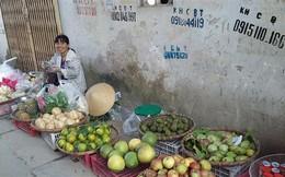 10 tháng Việt Nam nhập khẩu 120 nghìn tấn trái cây từ Trung Quốc