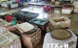 Lo sợ nhiễm độc, người dân quay lưng với các loại hải sản