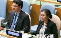 Việt Nam kêu gọi chấm dứt hành động làm phức tạp tình hình Biển Đông