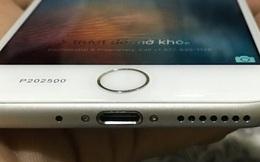 iPhone 7 về Việt Nam được rao giá 500 triệu đồng