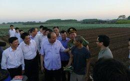 Thủ tướng dặn nông dân đừng trồng riêng rau sạch ăn, rau dơ bán