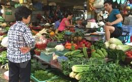 Hà Nội: Giá rau xanh tăng nhẹ do ảnh hưởng sau mưa bão