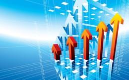 Phải trích lập dự phòng đầu tư tài chính lớn, lãi quý 4 của Sotrans giảm 77%