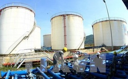 Nếu giá dầu tiếp tục lao dốc, Việt Nam có nên ngừng khai thác mỏ?