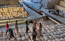 Philippines dự kiến nhập 250.000 tấn gạo trong quý 3