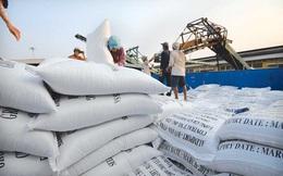 """Hội nghị """"giải cứu"""" ngành gạo?"""