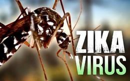 Zika bị tiêu diệt khi thời tiết lạnh dưới 16 độ C