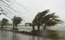 Trưa 15/9, bão số 10 sẽ đi vào đất liền các tỉnh Nghệ An - Quảng Trị