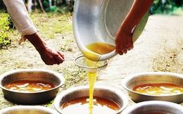 Xử lý mật ong không rõ nguồn gốc vùng U Minh Hạ