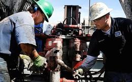 Giá dầu chững đà leo dốc vì số giàn khoan tại Mỹ tăng
