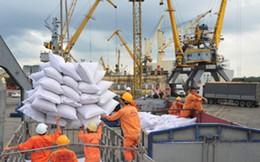 Việt Nam tiếp tục duy trì thị phần xuất khẩu gạo tại Philippines